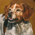 Profile photo of whyasker